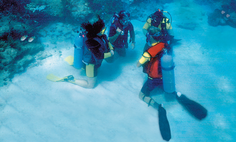 scuba divers training under water