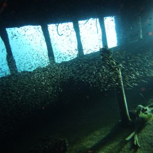 Go Wreck Diving With Halls!